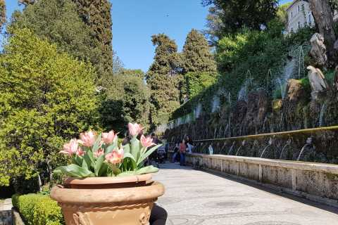 From Rome: Villa d'Este and Hadrian's Villa with Lunch