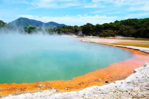 Auckland to Rotorua Small Group Tour & Activity Add-Ons