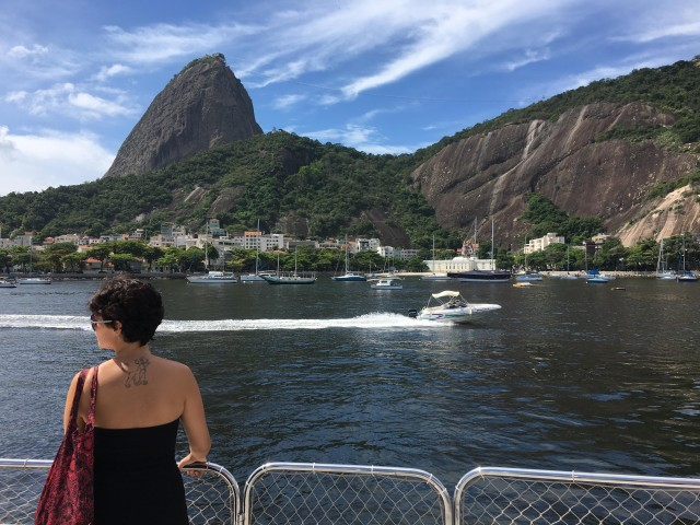 Rio From The Sea: Guanabara Bay Cruise with Optional Lunch