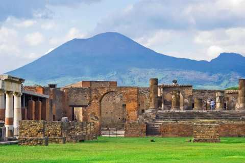 Naples: Full-Day Pompeii & Herculaneum Wine Tasting Tour