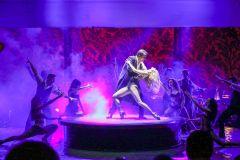 Buenos Aires: Show Señor Tango