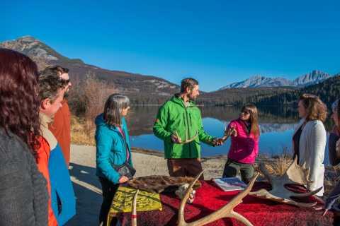 From Jasper: Jasper National Park Wildlife Discovery Tour