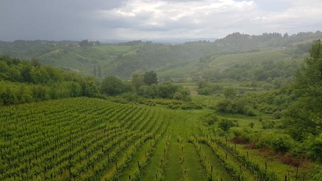 Van Zagreb: Centraal-Kroatië Wine & Cheese Tour