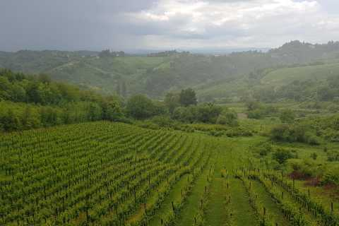 From Zagreb: Central Croatia Wine & Cheese Tour