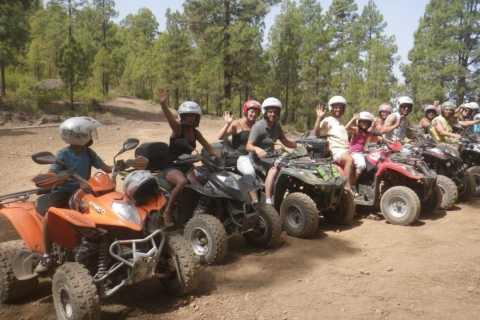 Playa de las Americas: 3-Hour Quad Bike Forest Ride