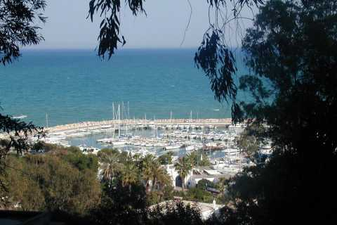 From Tunis: Half-Day Tour to Carthage and Sidi Bou Said