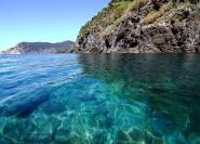 Ab La Spezia: Cinque Terre Tagestour per Boot