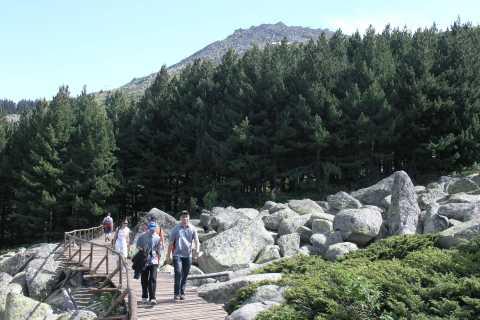 Full-Day Vitosha and Cherni Vruh Peak Hiking Tour