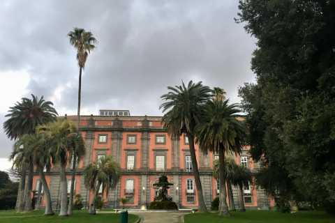 Nápoles: Entrada al Museo Nacional de Capodimonte