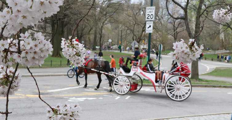 New York City: Romantisk Central Park Carriage Ride