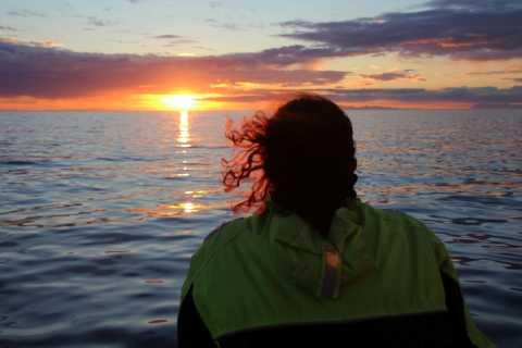 Reykjavík: Midnight Sun Whale Watching Cruise