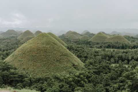 From Cebu: Day Trip to Bohol Highlights