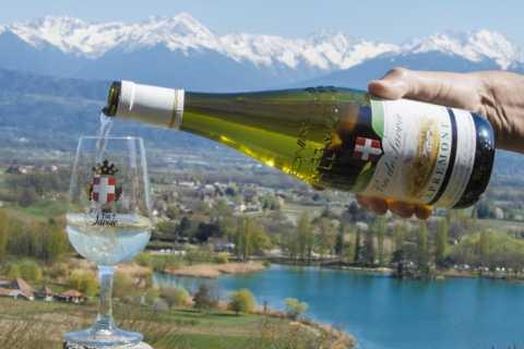 Chambéry: promenade de dégustation de vin avec vue sur les vignobles