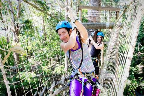 Currumbin Wildlife Sanctuary Entry & TreeTops Challenge
