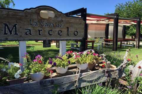 From Ensenada: Ojos Negros Valley Cheese & Wine Tasting Tour