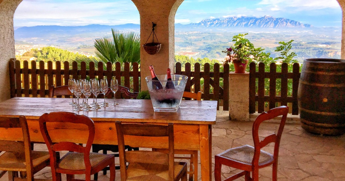 Barcelona: Wine & Cava Tasting Group Tour with Local Brunch