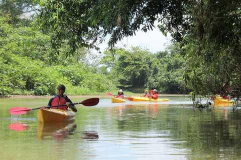 Arenal: Safari Kayak & Wildlife