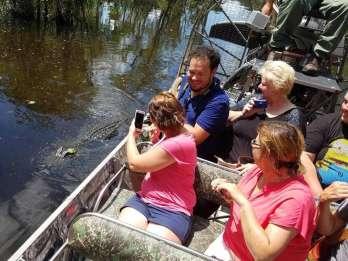 Everglades: Propellerbootfahrt & Wildlife-Show auf Deutsch