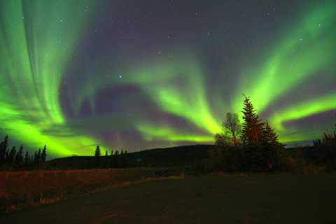 Fairbanks: Murphy Dome and Northern Lights Tour