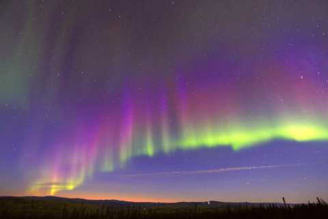Fairbanks: Moonlight Dog Sled, Dinner, & Northern Lights