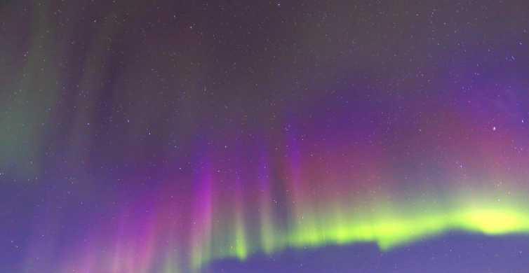 Fairbanks: Moonlight Dog Sled, Dinner, & Northern Lights