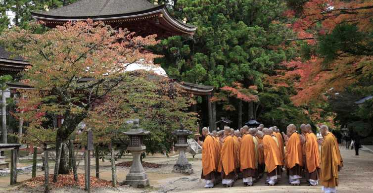 From Osaka: Mt. Koya Train Tickets & Lunch at the Temple