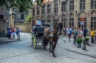 Private Sightseeing-Tour von Amsterdam nach Brügge