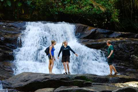 Paraty: Jungle Waterfall and Cachaça Distillery Jeep Tour