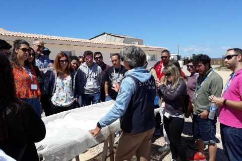 Mallorca: Salzmarsch & Südliche Klippen Selbstgeführte Tour
