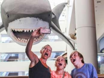 San Diego: Eintrittskarte für das San Diego Natural History Museum