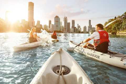 Brisbane: Guided River Kayak Tour