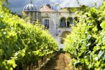 From Lisbon: Wine Cellar and Food-Tasting Tour