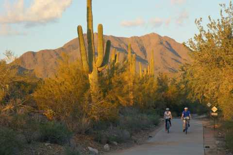Scottsdale: Half-Day Casual Bike Tour with Guide