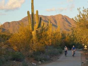 Scottsdale: Halbtägige Freizeitradtour mit Guide