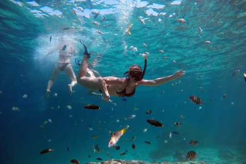 From Phuket: Phi Phi & Khai Islands Snorkeling by Speedboat