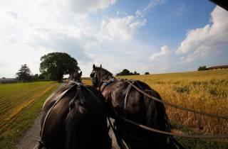 Ab New York: Tagestour über Philadelphia nach Amish Country