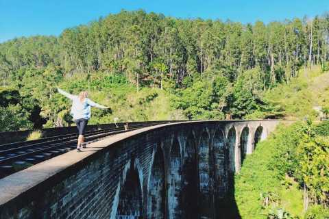 Ella: Little Adam's Peak and Nine Arch Bridge Half-Day Tour