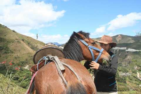 From Cusco: 2.5-Hour Temple of the Moon Horseback Ride