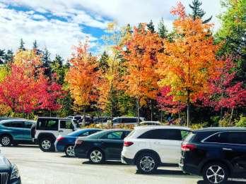 Boston: Herbstlicher Ausflug