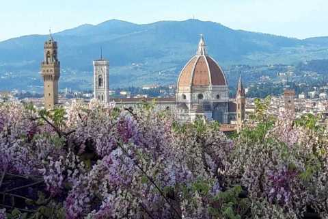 Florence: Walking Tour with Piazzale Michelangelo