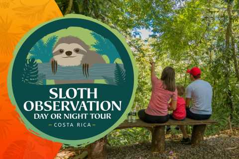 La Fortuna: Small-Group Sloth Watching Experience