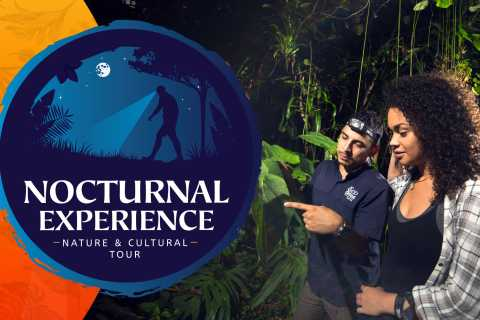 From La Fortuna: Nocturnal Nature Experience