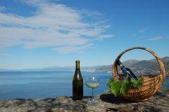 Camogli: Experiência de degustação de vinhos da Ligúria