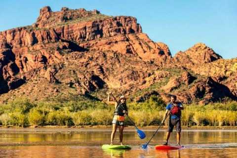 Phoenix & Scottsdale: Saguaro Lake Stand Up Paddleboard Tour