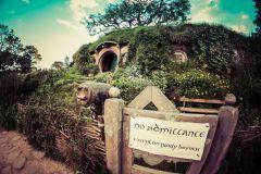 De Auckland: Excursão à tarde de Hobbiton