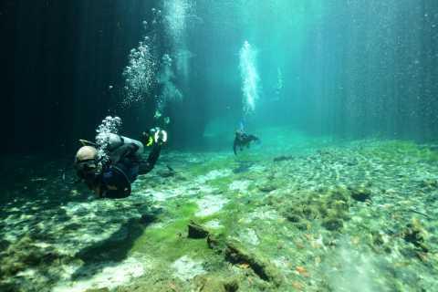 Tulum: Scuba Diving in Cenotes