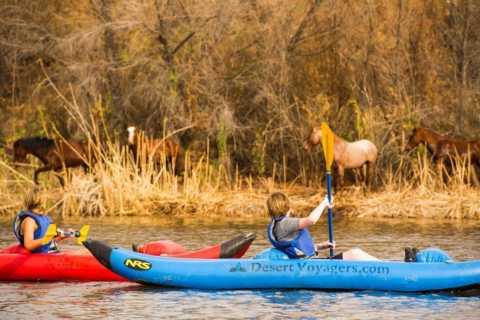 Phoenix & Scottsdale: Lower Salt River Kayaking Tour