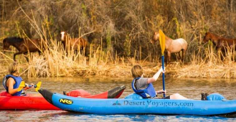 Phoenix & Scottsdale: Lower Salt River Kayaking Tour