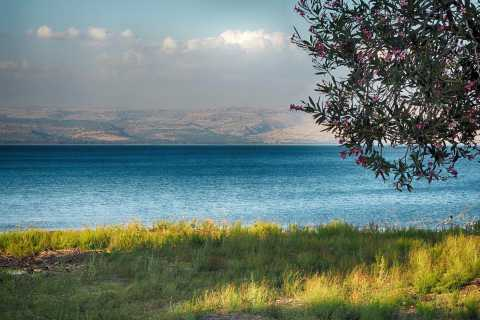 Tel Aviv: Golan Heights Day Trip with Guide