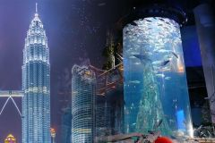 Ingresso para as Torres Petronas e Aquaria KLCC